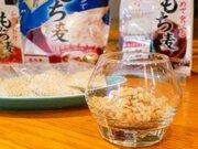 ごはんに混ぜるだけで太りにくい体に! この秋、買うべき「もち麦」はコレ!