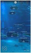 水族館×AIの図鑑アプリがスゴイ!11月まで体験できる