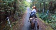 袴姿で馬に乗り、富士の樹海を疾走する女性 まるで映画のワンシーン...「爽快感すごい」乗馬動画に反響