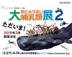 画像:科博「大哺乳類展2」2019年開催…前売券は3/20まで