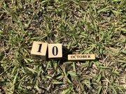 記念日が集中する10月10日は「萌える」日でもあった