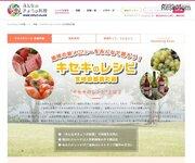 宮崎県都農町、特産食材を生かした「キセキのレシピ」募集