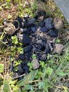 「炭は自然には還らない」キャンプ場のあちらこちらに炭の残骸 キャンパーの注意喚起に「捨ててしまった…無知は罪…」