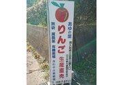 「Twitter民の力を貸してくれ」 台風で甚大な被害を受けた果樹園を、1人のツイートが救った話