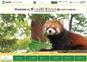 八木山動物園が担っている、スマトラトラの個体管理責任者って?