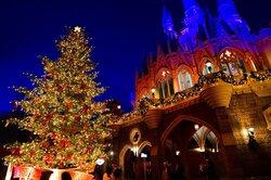 画像:【ディズニー】生木のツリーに心温まる、35周年のランドのクリスマス