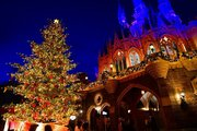 【ディズニー】生木のツリーに心温まる、35周年のランドのクリスマス