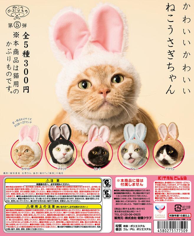 猫がうさぎに大変身!猫専用のかぶりもの「かわいい かわいい ねこうさぎちゃん」が新登場