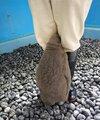 画像:頭隠してもふもふ隠さず 脚の間に顔をうずめるペンギンの赤ちゃんが愛らしいと話題に