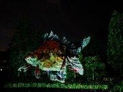 光の金魚が空を飛び、笛の音色が嵐山に響く...プロジェクションマッピング使った和のデジタルアートが、「京都・嵐山花灯路」に登場中!