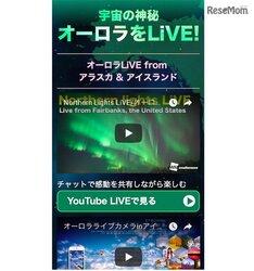 画像:オーロラ動画、アラスカとアイスランドの二元中継
