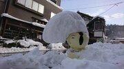 大雪でグレちゃった? 絶妙なバランスが生んだ「リーゼントこけし」が話題に